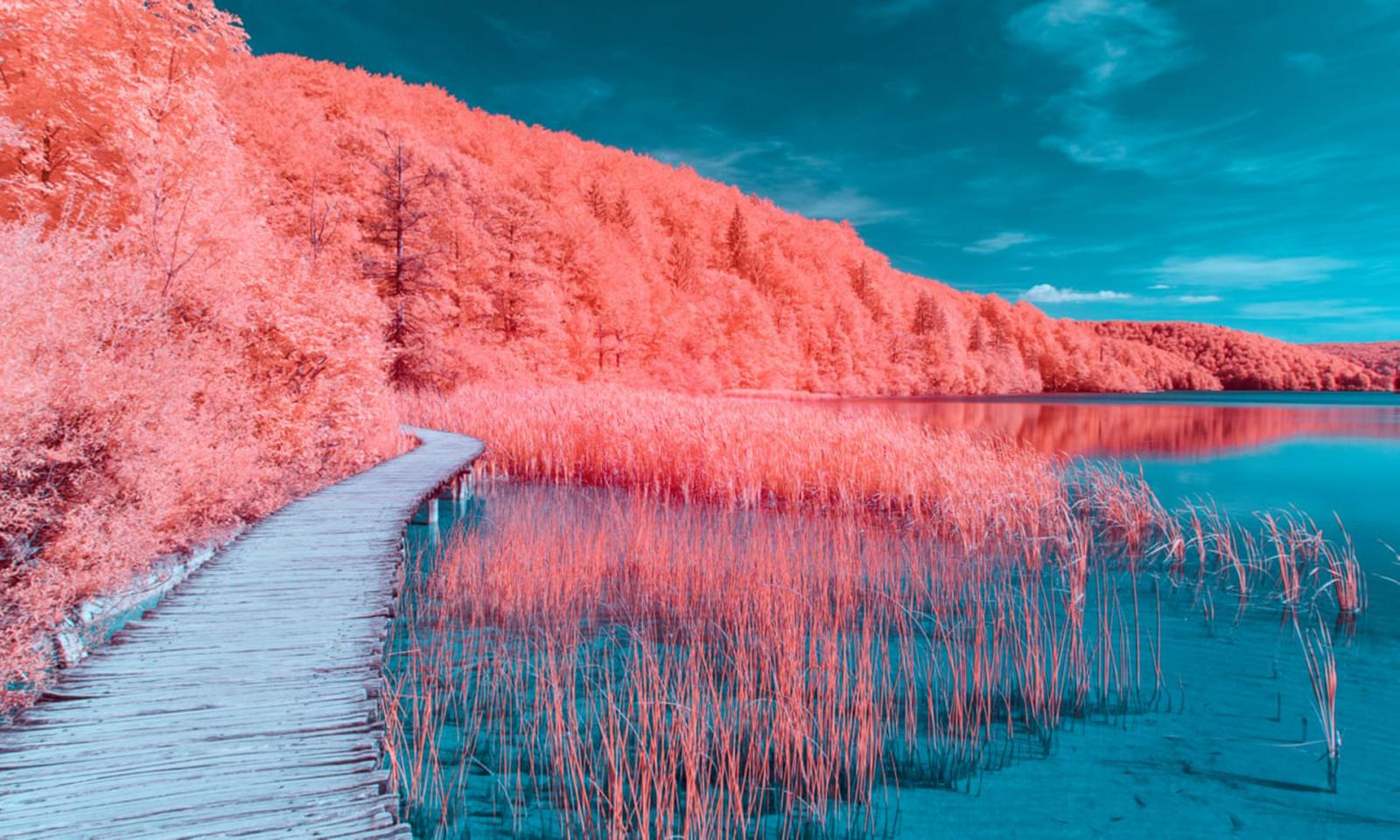 Sedia Pantone Rosa : Pantone цвет года за лет u Тенденция u Дизайн u Интерьер Дизайн